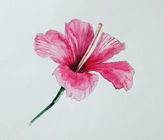 'Hibiscus' watercolour painting as part of my 'Custom Flowers Requests' section. Russian watercolour on 300gsm paper (15,2 x 20,3 cm /// 6 x 8 in)